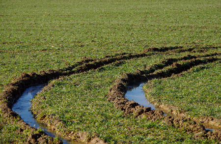 Car tracks in the waterlogged field Stock Photo