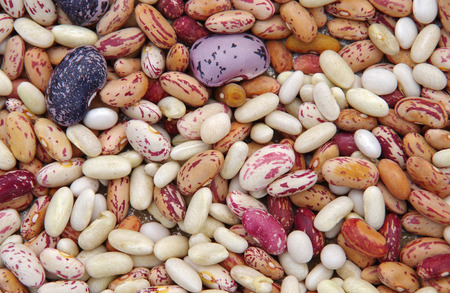 Different types of mottled beans as background photo