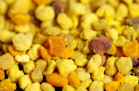 Detail of dried bee pollen Stock Photo