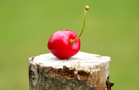 Cherry on a wooden board and green background