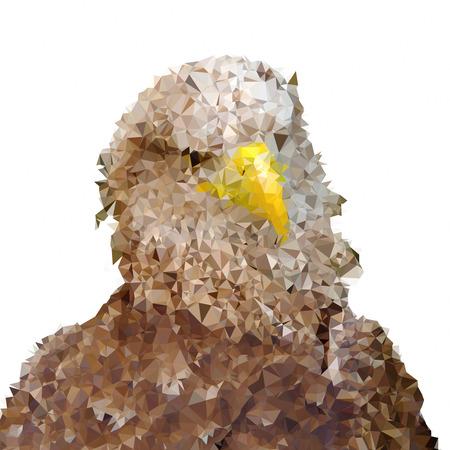 Triangle polygonal silhouette of eagle on white background Stock Photo