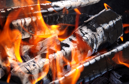 View of burning wood in the sun
