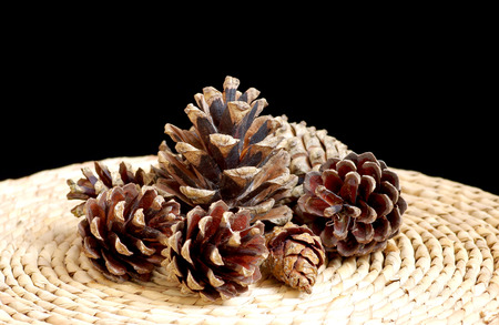 Pine cones on table on black background