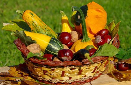 Ornamental pumpkins, walnuts and conkers as a decoration in basket Stock Photo