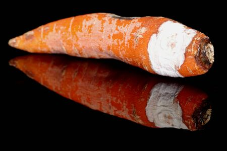 Moldy carrots on a black background with reflection
