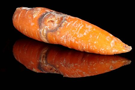 Rotting carrots on a black background with reflection