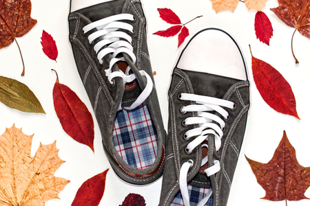 Casual Canvas Sneakers. Casual canvas gray sneakers in white background and autumn color leaves background. Reklamní fotografie