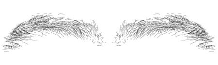 Vector illustration of black eyebrows in transparent white background.