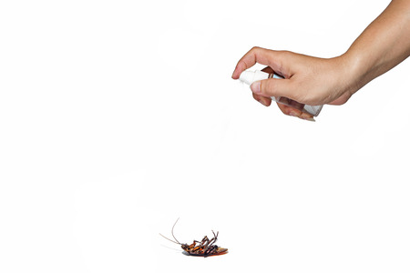 As a gesture of dispenser spray bottle to spray to kill cockroaches. On a white background. Stock Photo