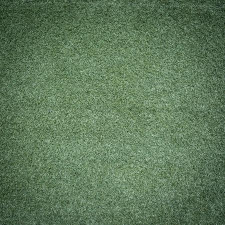 green meadow: green grass