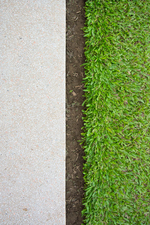 Green grass and terrazzo floor background photo