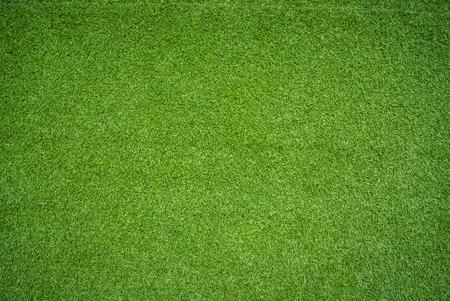 Herbe verte  Banque d'images - 33692482
