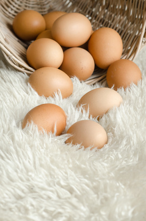 copys pace: Close up eggs in old basket on white wool for background Stock Photo