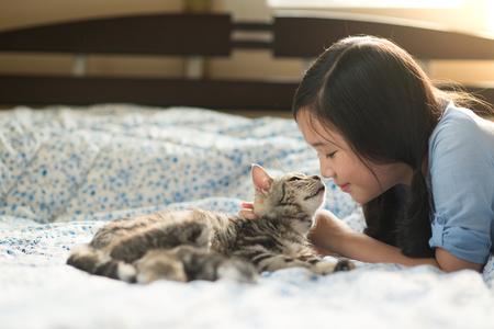 침대에 미국 쇼트 헤어 고양이와 함께 누워 아름다운 아시아 여자 스톡 콘텐츠