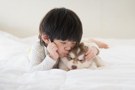 アジア子供のベッドの上のシベリアン ハスキー子犬のキス