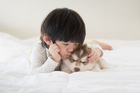 Little asian child kissing a siberian husky puppy on bed