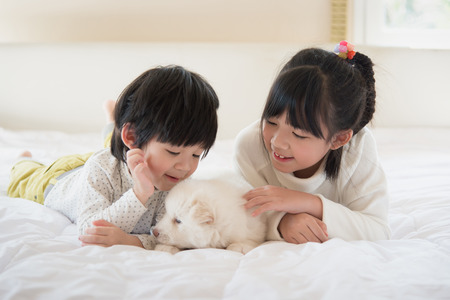 young black girl: Little asian children and puppy having fun lying in bed Stock Photo