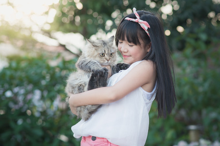 korea girl: Beautiful Asian girl holding Lovely persian cat with sunshine in the park