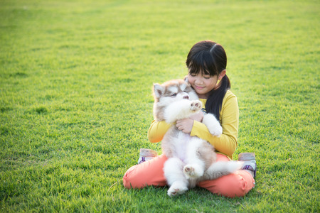 husky: Beautiful asian girl playing with siberian husky puppy in the park Stock Photo