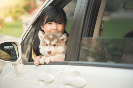 Happy asian asian girl and siberian husky puppy sitting in the car Stock Photo