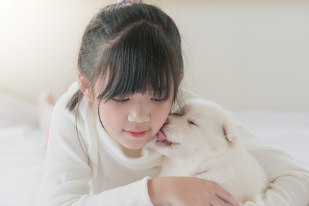 White puppy is lovingly licking the cheek of a asian girl. Stock Photo