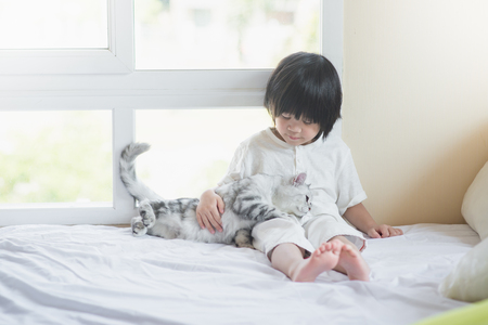 Cute asian baby playing with American Shorthair  kitten on white bed