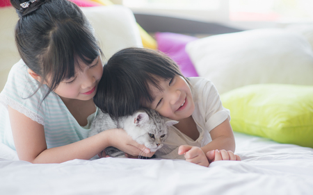 Asian children playing with american shorthair cat on the bed