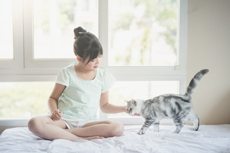protection concept: Beautiful asian girl playing with american shorthair cat on the bed Stock Photo