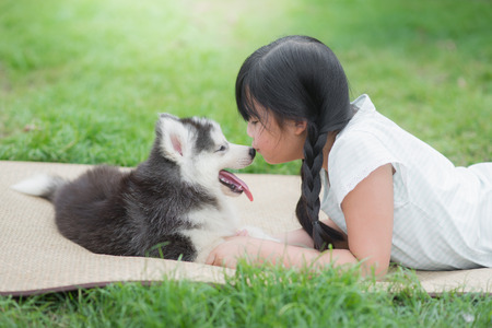 Beautiful asian girl playing with siberian husky puppy in the park Reklamní fotografie