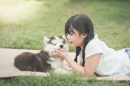 korean girl: Beautiful asian girl playing with siberian husky puppy in the park,vintage filter