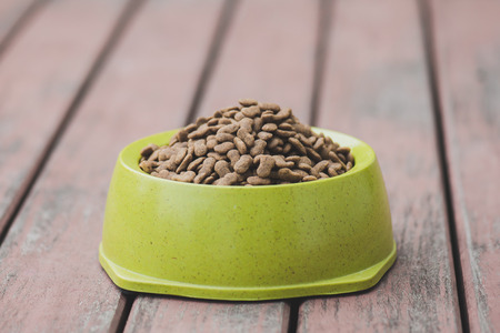 Dog food in a bowl on wooden floor