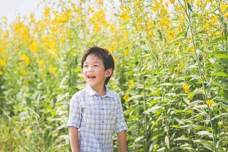 Portrait of cute Asian child in crotalaria Fields,outdoor concept Stock Photo