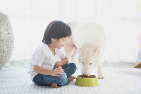 Cute Asian child feeding siberian husky dog at home