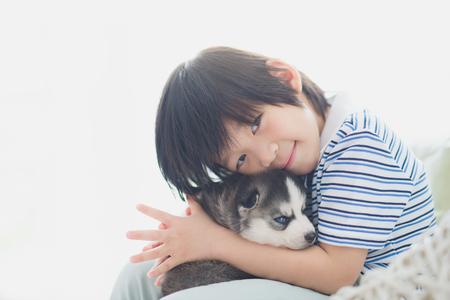 白いバスケットの椅子のシベリアン ハスキー子犬と遊ぶかわいいアジア子供