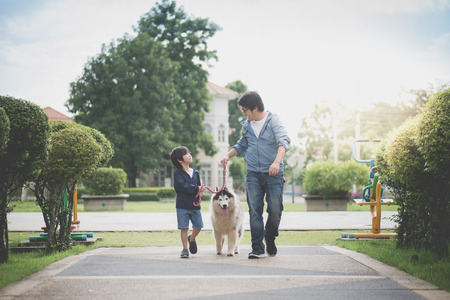 Asian father and son walking with a siberian husky don in the park Stockfoto