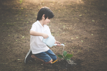 Cute Asian child watering young tree Zdjęcie Seryjne