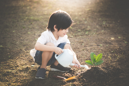 Cute Asian child watering young tree Stock Photo