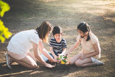 검은 토양에 어린 나무를 심는 귀여운 아시아 어린이와 어머니