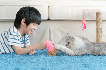 Cute Asian child playing with two cats in living room.