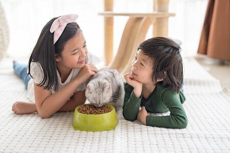 Cute Asian children feeding American shorthair cats at home