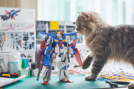 BANGKOK, THAILAND - March 22, 2021: Close up of Plastic model MSZ-010 ZZ GUNDAM VER KA (MG) scale 1:100 with persian cat on wooden table