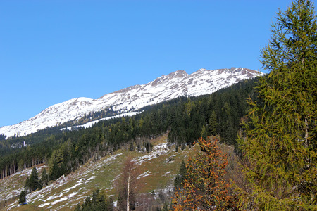 rauris: Winter snowy Alps with Sunn and trees in Rauris