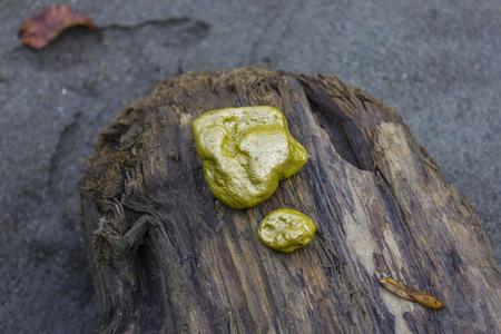 rauris: Gold nuggets