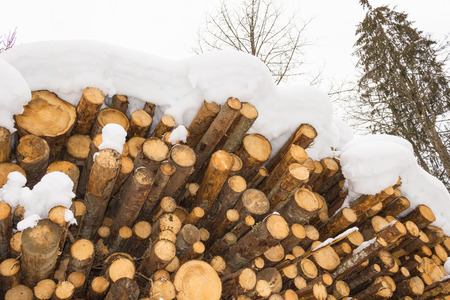 woodshed: Stacked wood covered with snow, alps Austria in Salzburg