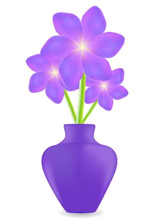 Three violet geranium flowers background