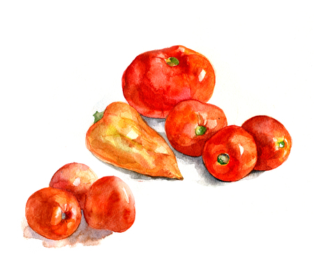 realism: Tomatoes and pepper, watercolor, realism