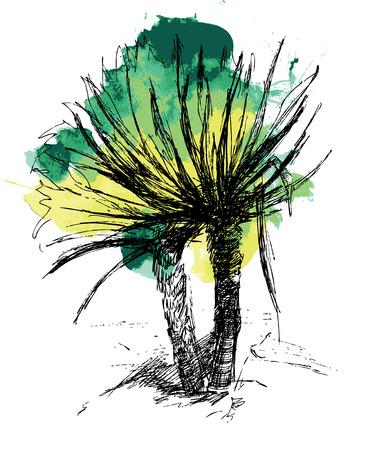 palma: Palma. Ink sketch on green watercolor blot. Hand drawn illustration.