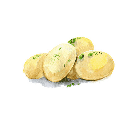 Boiled potatoes. Watercolor illustration Isolated on white background. Vector