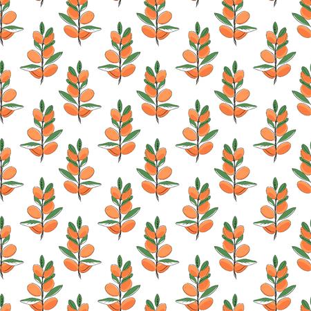 Seamless pattern of argan. Vector illustration for background Illustration
