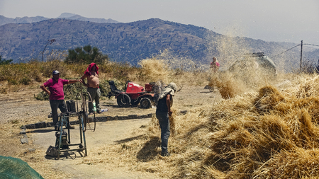 scorching: Between hay, straw and chaff in the wind: work in fields 603